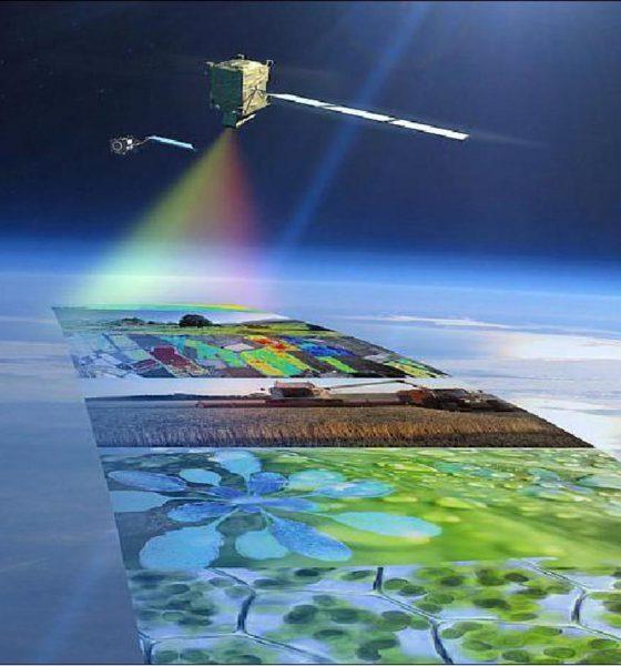 Satellite FLEX