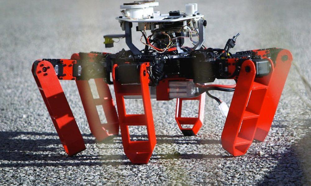 CNRS : robot AntBot