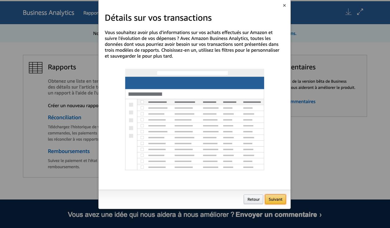 Amazon Business Analytics