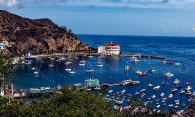 Catalina Island (Californie)