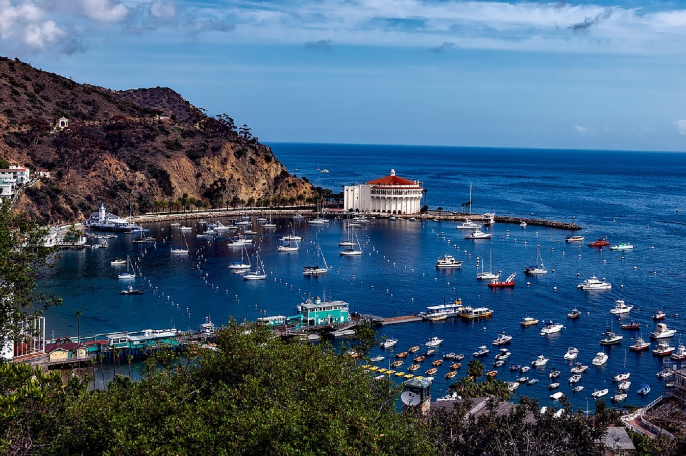 Catalina Island (Californie)
