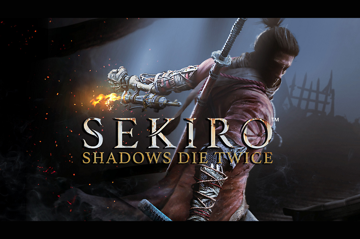 Sekiro-Test