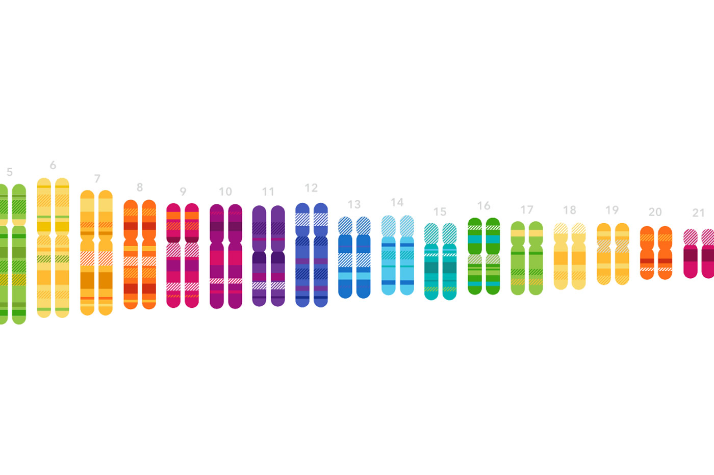 Test ADN Pentagone 23andMe