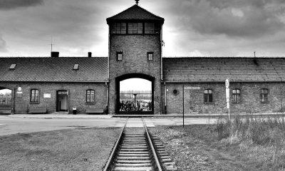 Auschwitz lance un appel à la décence numérique