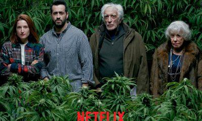 Netflix Family Business