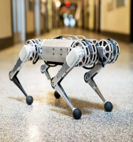 Le robot Cheetah est capable de faire des backflip