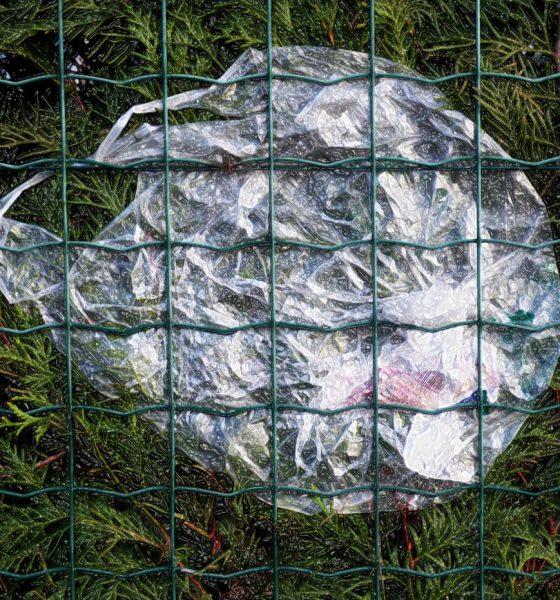 sac plastique - environnement