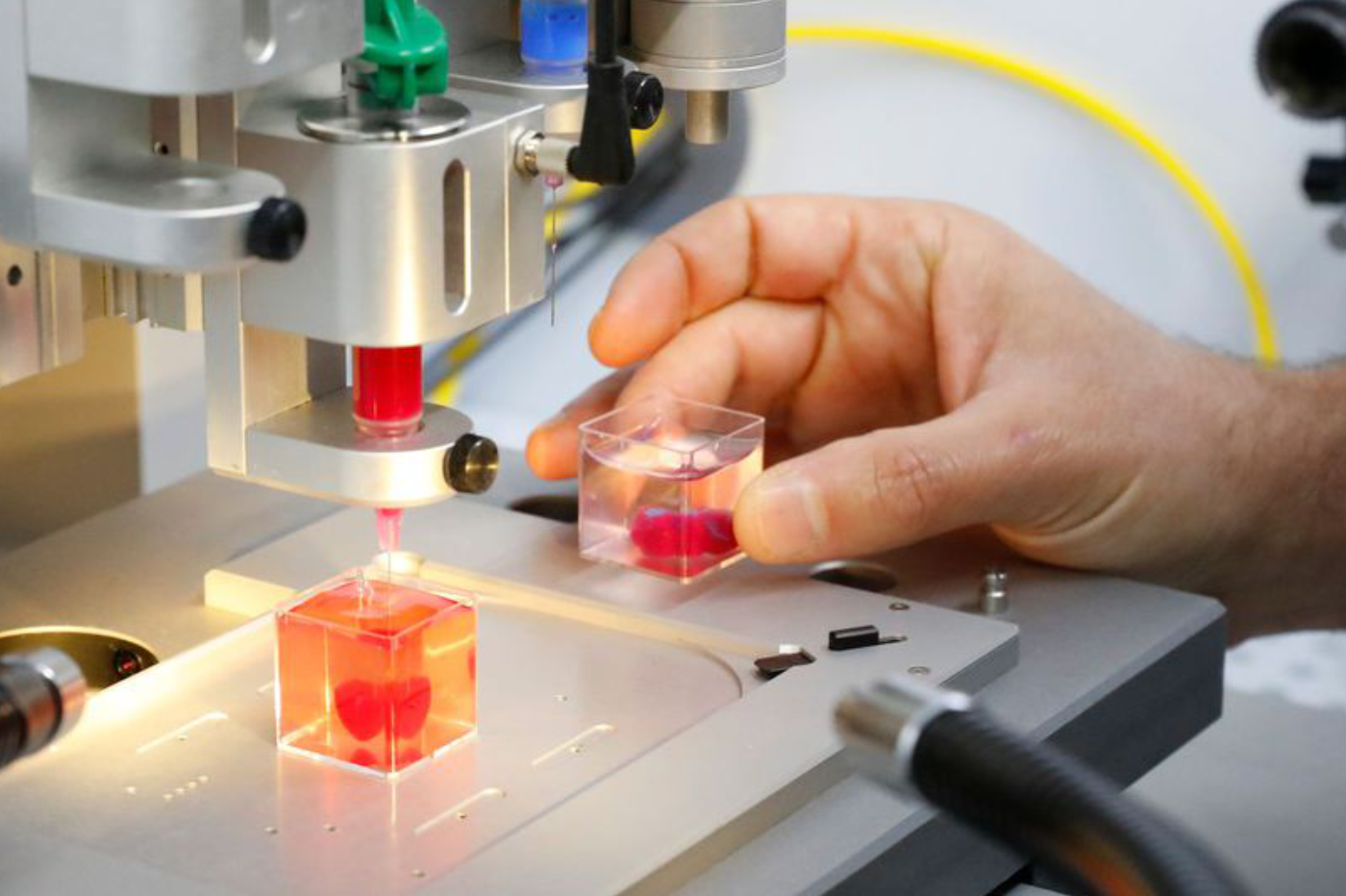 Prototype de cœur en impression 3D