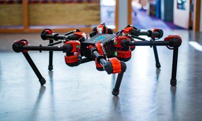 Facebook veut apprendre à ses robots à marcher