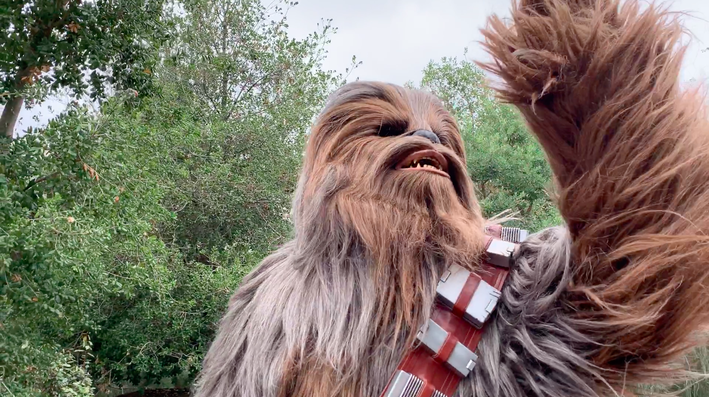 Star Wars Galaxy's Edge Chewbacca