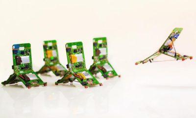 Tribots