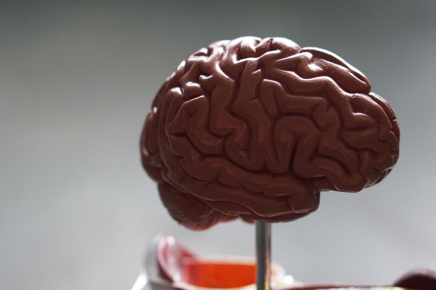 Mars cerveau radiation