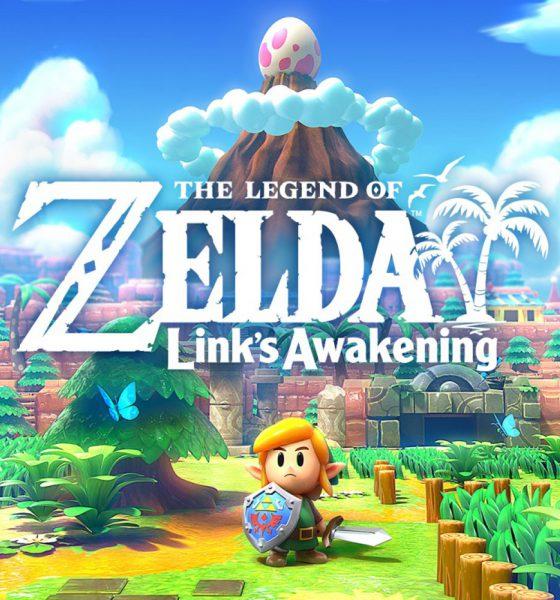Test Zelda Link's Awakening Switch Collector