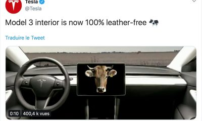 Tesla Model 3 vegan