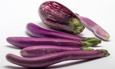Une aubergine