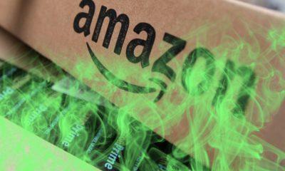 Amazon périmé