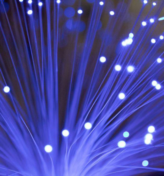 fibre optique seisme