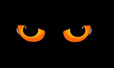 Des yeux de chat