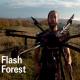drones arbres