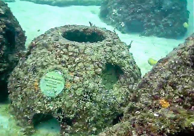 eternal reefs enterrement