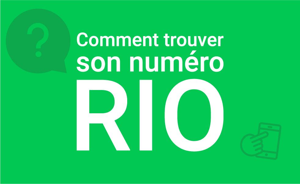 Numéro RIO