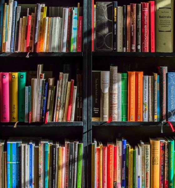 livres, lecture, bibliothèque