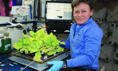 salade NASA ISS