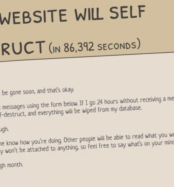 This-website-will-self-destruct