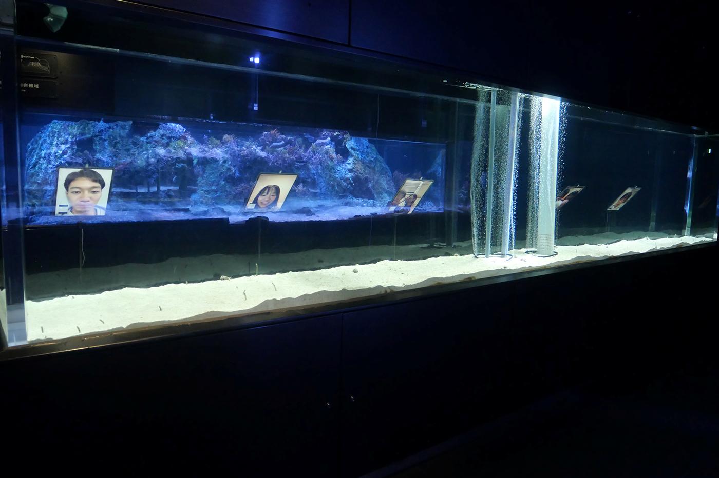 ipad-aquarium-tokyo