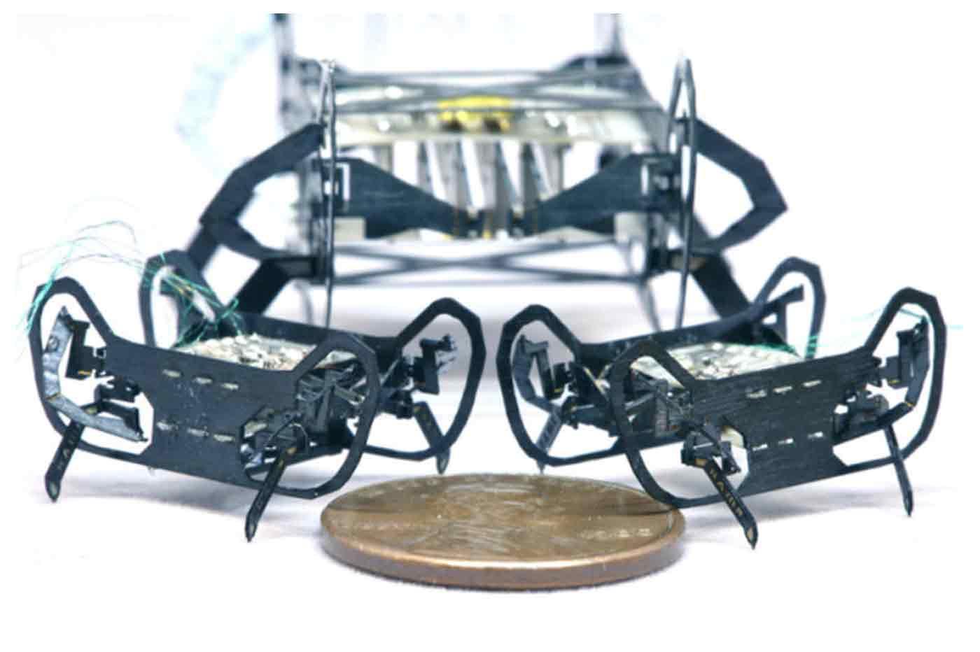 robot Harvard