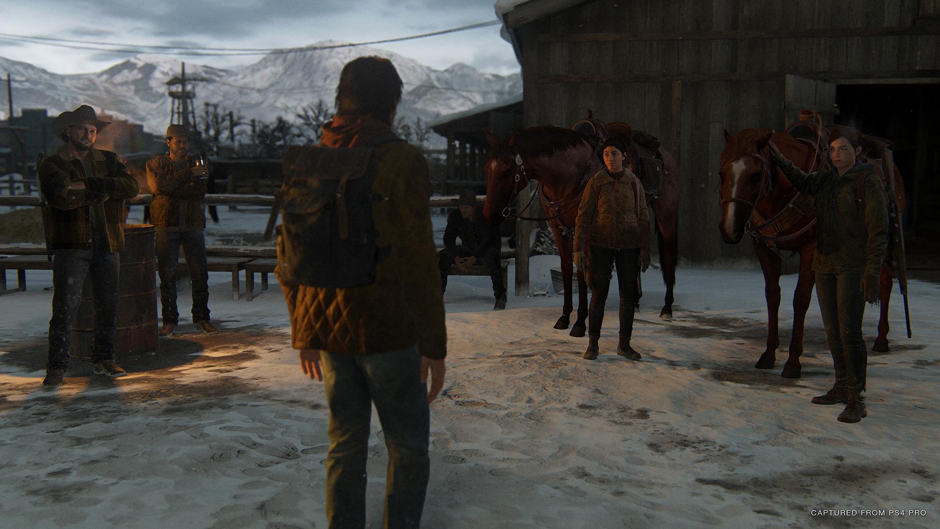 The Last Of Us Part II - Jackson