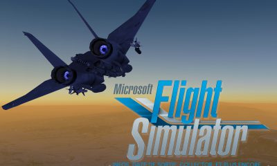 Microsoft flight Simulator : Infos, date, collector et plus encore