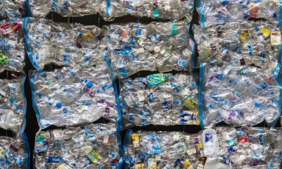 Plastique Pollution Decouverte Recyclage