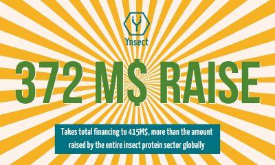 Ynsect startup levée de fonds