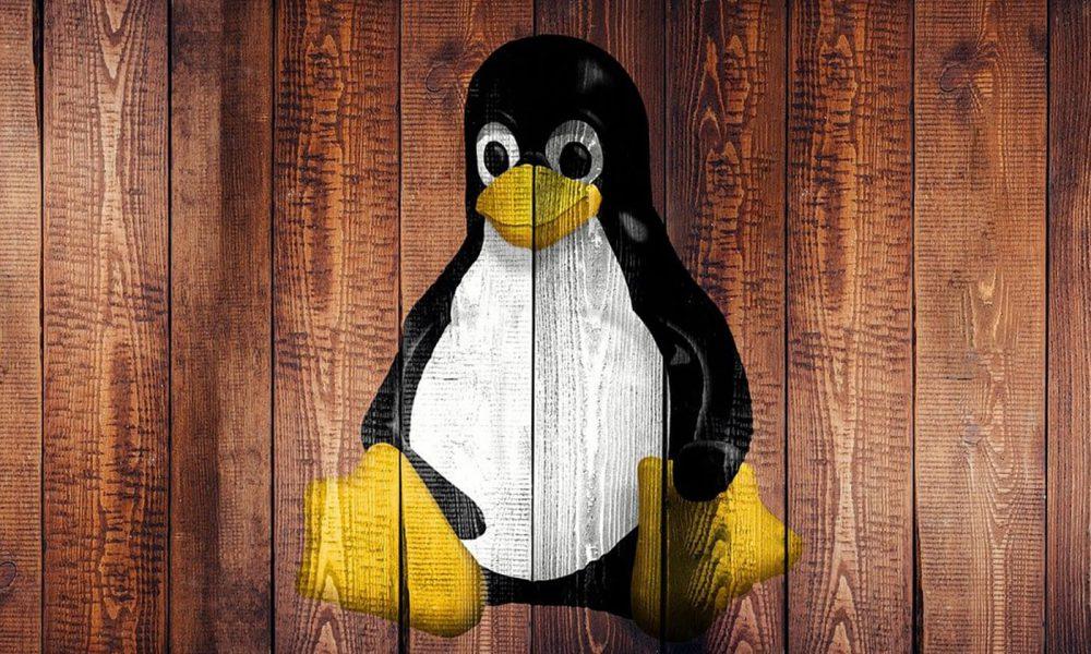 Meilleur hébergement Linux
