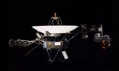 Réplique Sonde Voyager