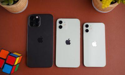 test iphone 12 mini vs 12 vs pro max