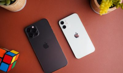 test iphone 12 mini vs pro max