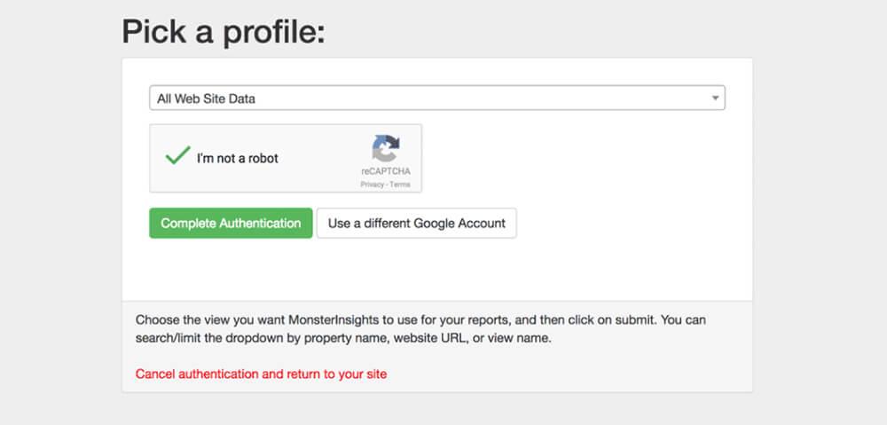 Sélection profil MonsterInsights Google Analytics