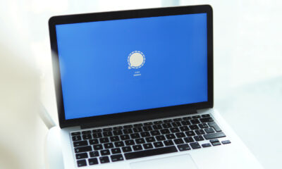 Signal Desktop ordinateur