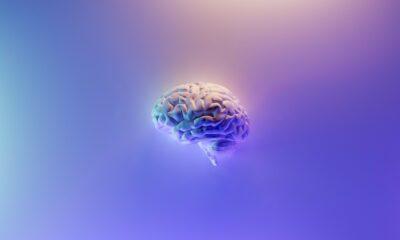 Omniscient Neurotechnology startup