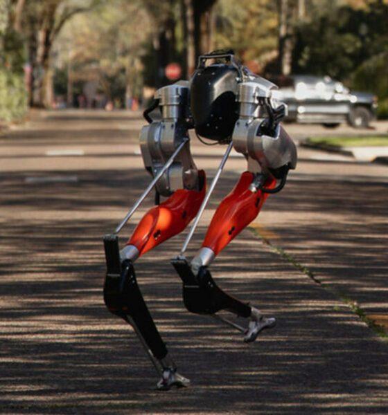 cassie robot livraison